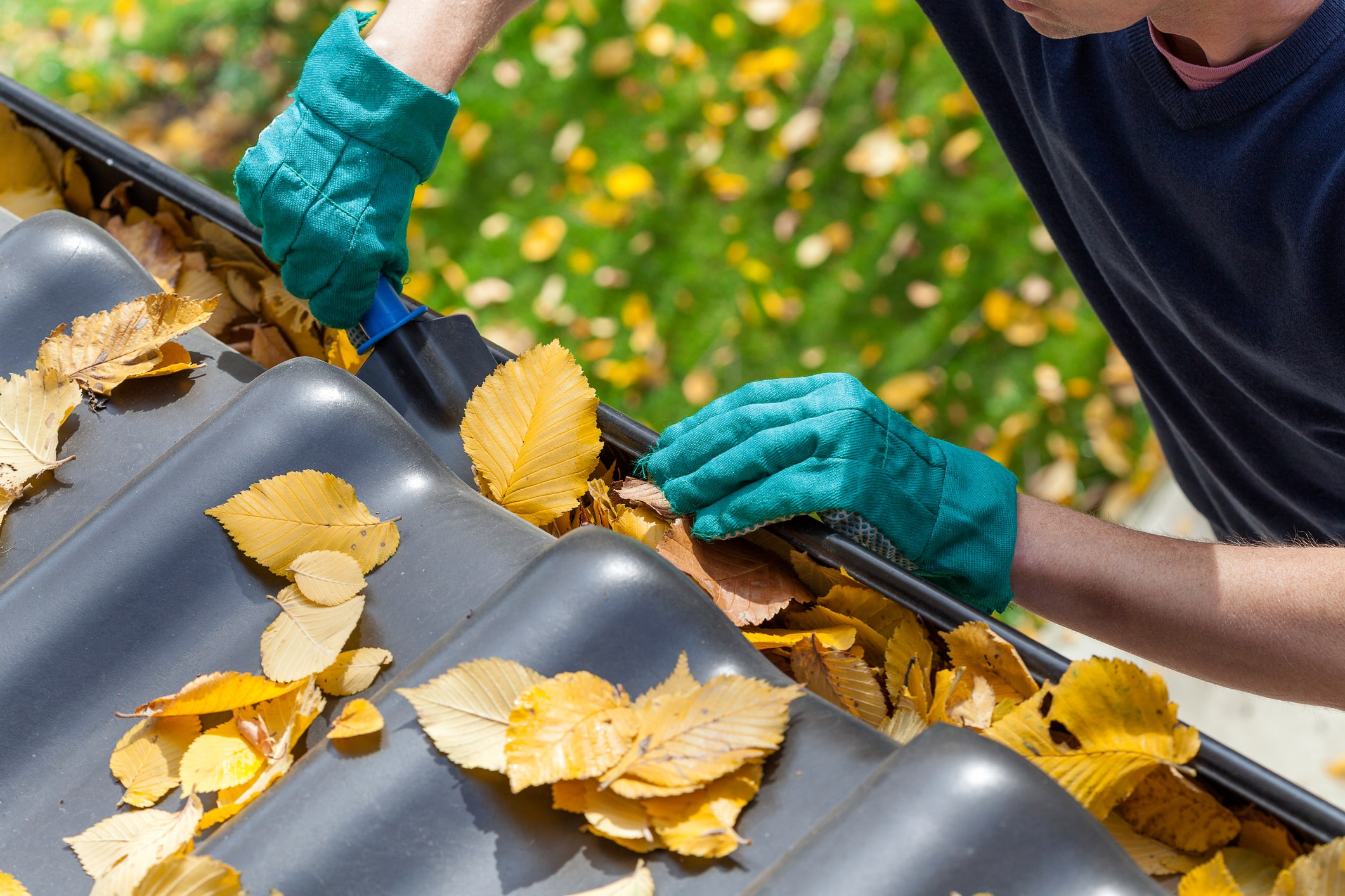 Scooping Leaves from the Gutter